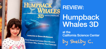 Humpback Whales Movie Review by Shelby C.