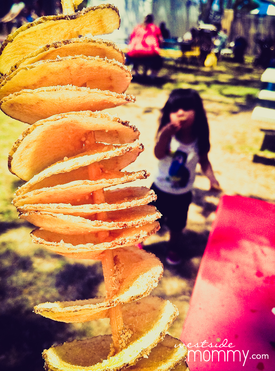 This is a Texas Tater Twist. It is deep fried thinly sliced spiral potato on a stick = potato chips on a stick. $6.00
