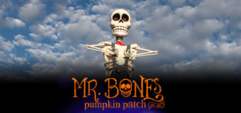 Culver City's Mr. Bones Pumpkin Patch opens Oct. 1st