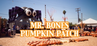 Tips for Visiting Mr. Bones Pumpkin Patch in Culver City