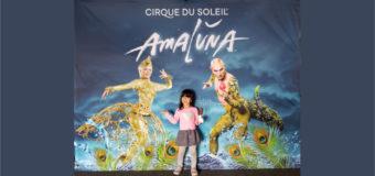 """Review: Cirque du Soleil """"Amaluna"""" was amazing!"""